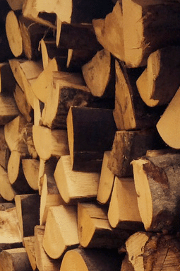Wood stoves need seasoned logs to be happy