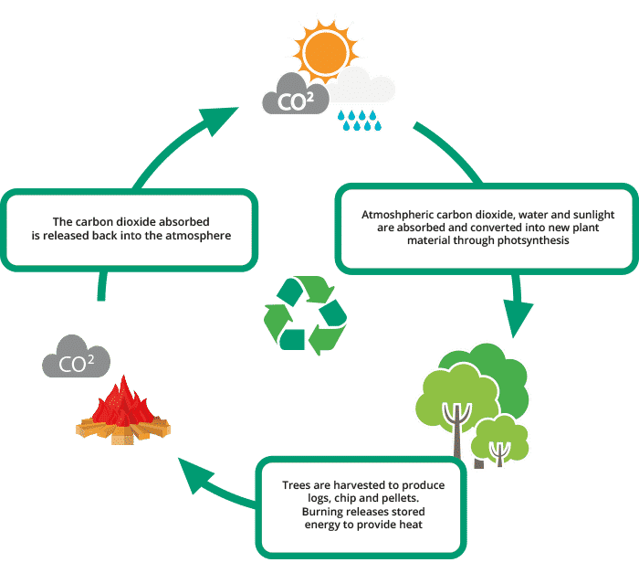 Wood Burning carbon dioxide co2 Cycle